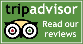 Tripadvisor-read-reviews